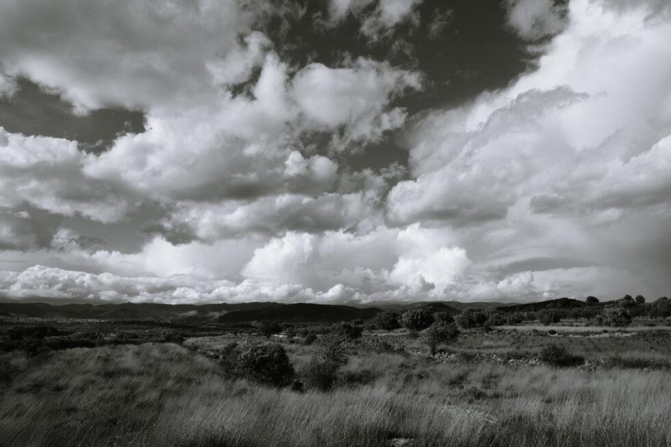 04-11-21-landscape2